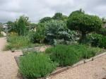 Fishbourne Gardens